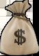 money-bag