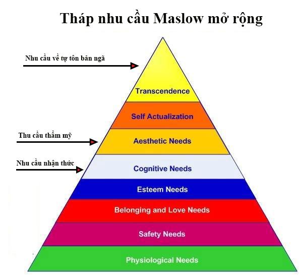 tháp nhu cầu của maslow là gì 7