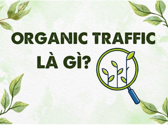 Organic traffic là gì? Vì sao nên đầu tư vào Organic traffic?