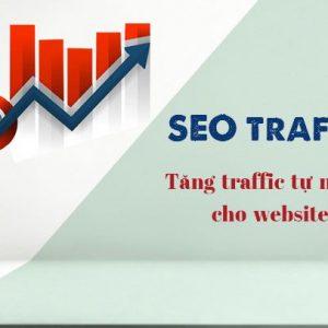 cách tăng traffic tự nhiên cho website